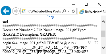 Viewing a return copy file with the .htm extension inside of a browser, document 2.